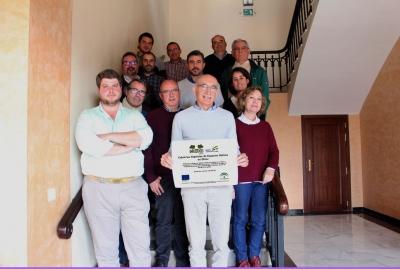 Un proyecto innovador demostrará los beneficios de la implantación de cubiertas vegetales de especies nativas en olivar