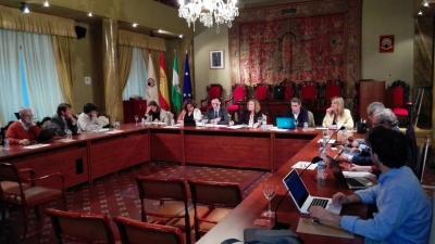 El Pleno del Consejo Social reunido esta tarde en sesión ordinaria