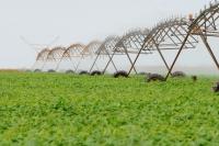 Irrigación de un campo de soja. Foto: Pedro Ventura/Agência Brasília