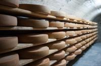 Ciencia en la UCO. ¿Qué rastro dejan los desinfectantes en el queso?