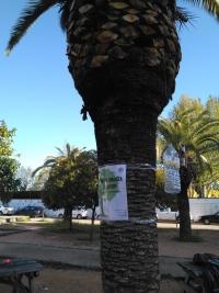 Voluntarios universitarios inician una campaña sobre los residuos de Rabanales