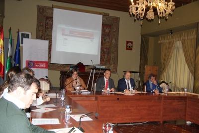 Un momento de la sesión extraordinaria del Pleno del Consejo Social celeberada hoy