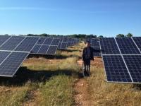 Francisco Adame en un campo de instalaciones fotovoltaicas