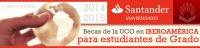 http://www.uco.es/internacional/internacional/becas/santander/becas-iberoamerica-santander.html