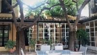 Uno de los patios cordobeses donde se celebrarán los microencuentros